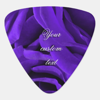 Delicate bright purple roses flower photo guitar pick