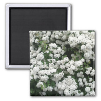 Delicate Clusters 2 Inch Square Magnet