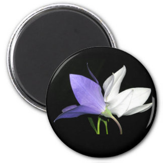 Delicate Duo Floral Magnet