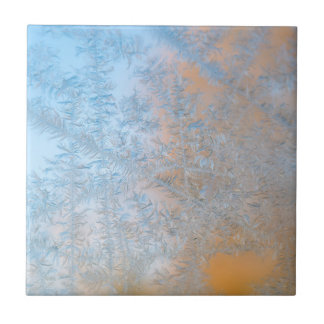 Delicate frost pattern, Wisconsin Small Square Tile