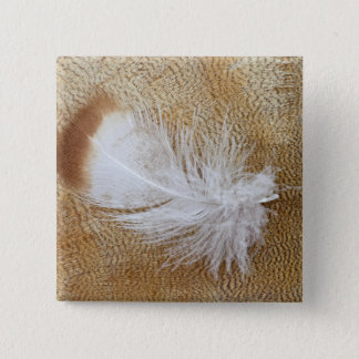 Delicate Goose Feathers 15 Cm Square Badge