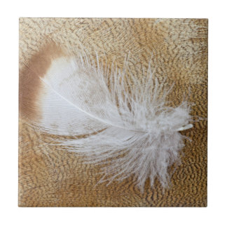 Delicate Goose Feathers Ceramic Tile
