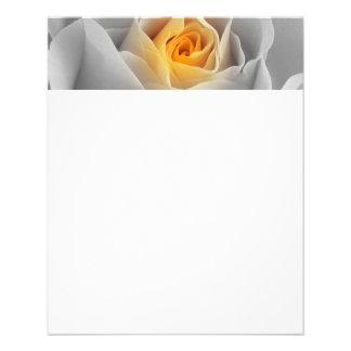 Delicate Gray Rose 11.5 Cm X 14 Cm Flyer