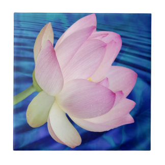 Delicate Lotus flower and meaning Ceramic Tile