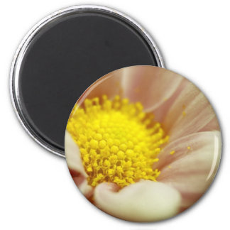 Delicate Peach and Yellow Flower Refrigerator Magnet