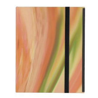 Delicate Peach iPad Case