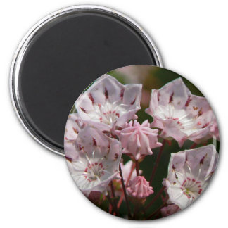 Delicate Pink 6 Cm Round Magnet