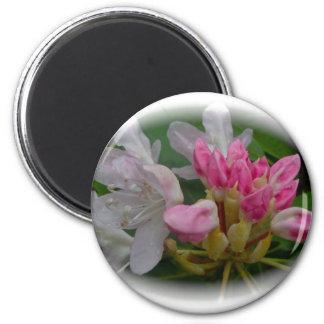 Delicate Pink Azaleas 6 Cm Round Magnet