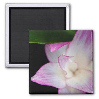 Delicate Pink Flower Magnet