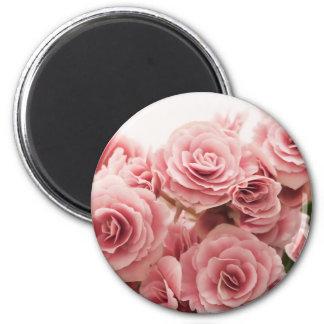 Delicate Pink Flowers Fridge Magnets