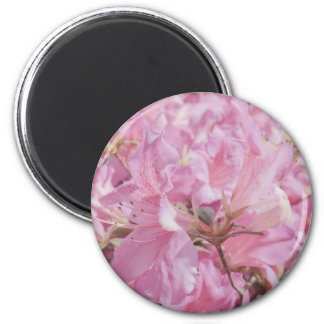 Delicate Pink Flowers Magnets