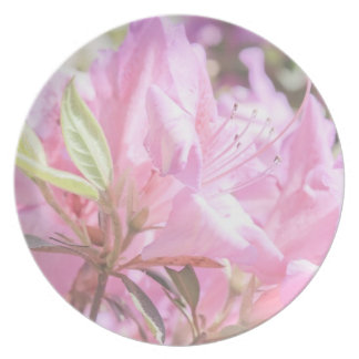 Delicate Pink Flowers Plates