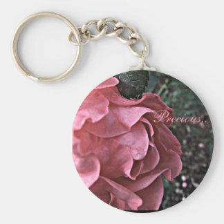 Delicate Pink Roses Over Footpath Photograph Key Ring