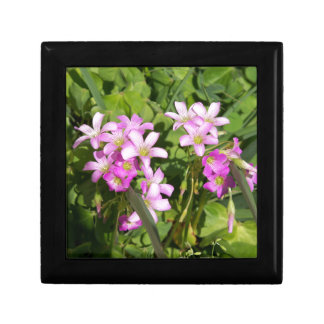 Delicate pink Spring wildflowers Gift Box
