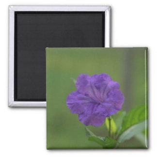 Delicate Purple Flower Square Magnet