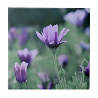 Delicate Purple Lavender Flowers Ceramic Tile