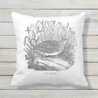 Delicate Quail Vintage-print Outdoor Pillow
