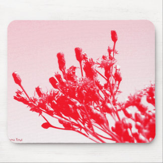 Delicate Red Wildflowers Mouse Pads