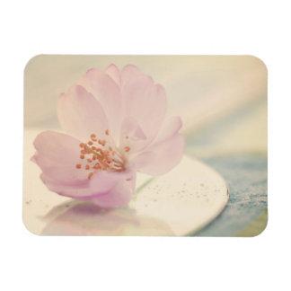 Delicate Soft Pink Cherry Blossom Flower Rectangular Photo Magnet