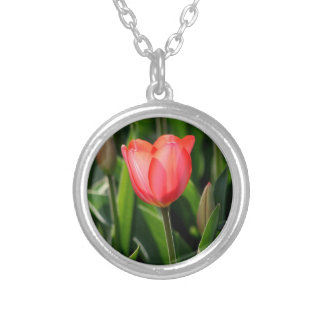 Delicate Tulip Silver Plated Necklace