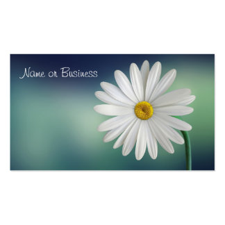 Delicate White Daisy Pack Of Standard Business Cards