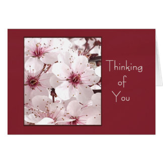 Delicate White Flower THINKING OF YOU  Card