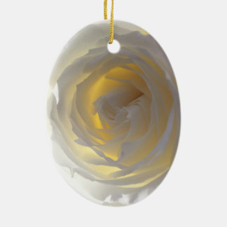 Delicate White Rose Photograph Christmas Tree Ornaments