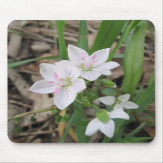 Delicate Wildflower Mousepad