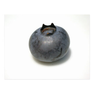 Delicious Blueberry Postcard