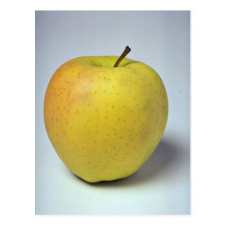 Delicious Golden Delicious apple Postcard