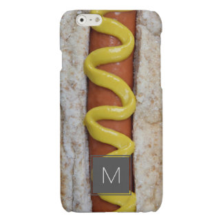 delicious hot dog with mustard photograph