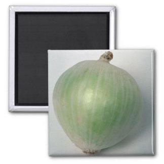 Delicious Onion Square Magnet