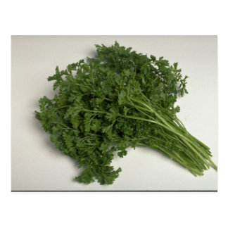 Delicious Parsley Postcard