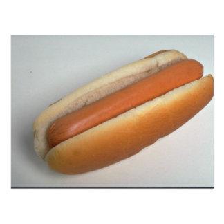 Delicious Plain hot dog Postcard