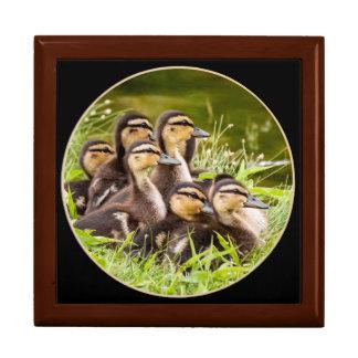 Delightful Ducklings Gift Box