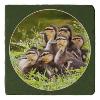 Delightful Ducklings Trivet