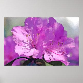 Delightful Lavender Poster