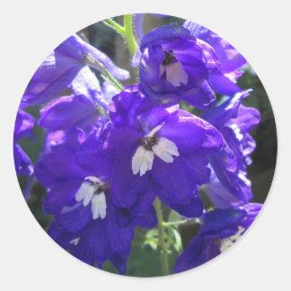 Delphinium Flower Close Round Sticker