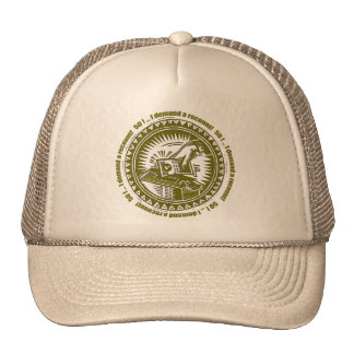 Demand A Recount 50th Birthday Gifts Cap