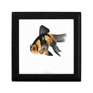 Demekin Goldfish Isolated Gift Box