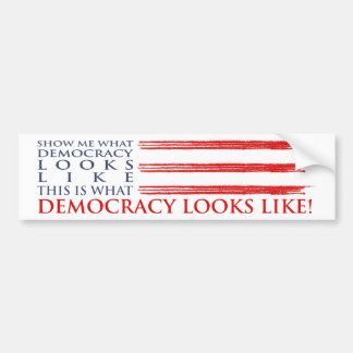 Democracy Bumper Sticker