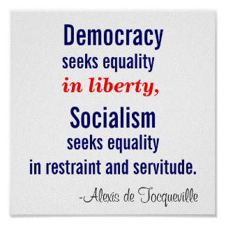 Democracy seeks equality in liberty print