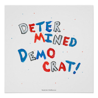 Democratic party fun patriotic democrat voters poster