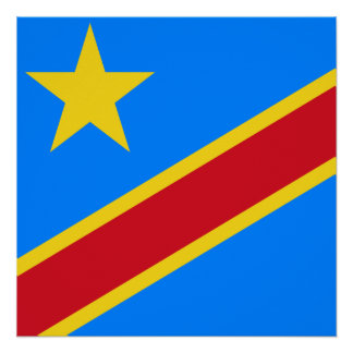 Democratic Republic of the Congo World Flag Poster