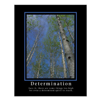 Demotivational Posters ... Determination