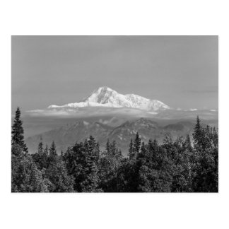 Denali (Mt. McKinley) Postcard