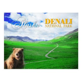 Denali National Park, Alaska Postcard