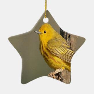 Dendroica petechia bird peace and joy ceramic star decoration