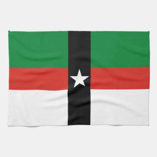 Denison city flag united state america Texas Kitchen Towel