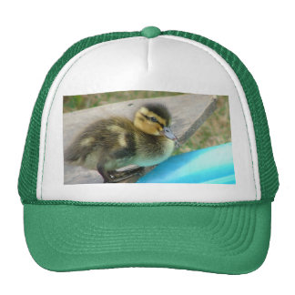Denny the Duck hat